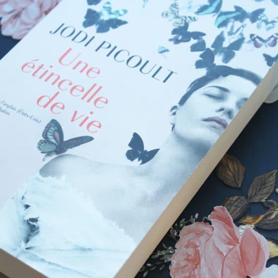 Une étincelle de vie - Jodi Picoult