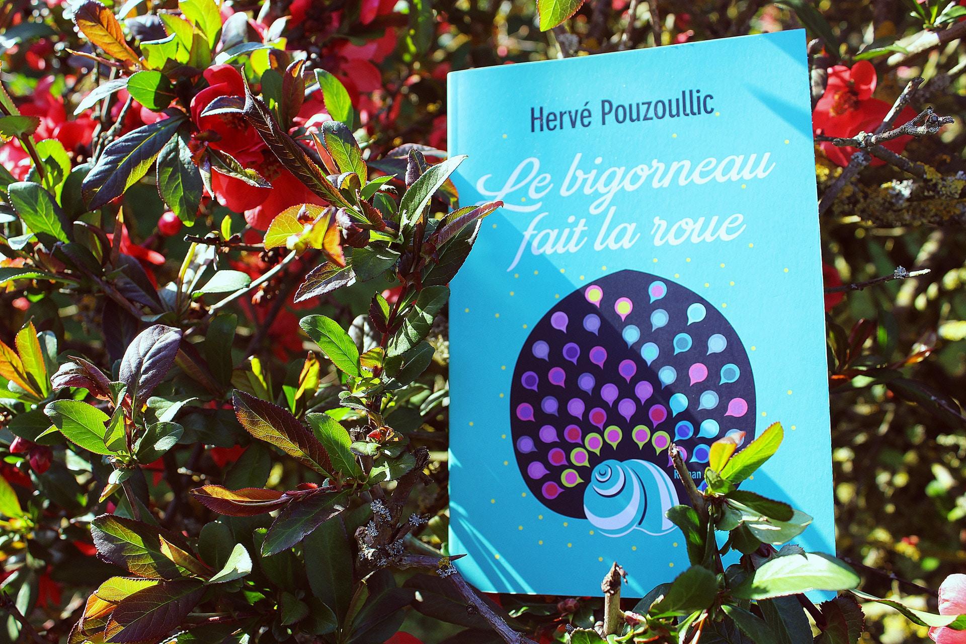 Le bigorneau fait la roue – Hervé Pouzoullic